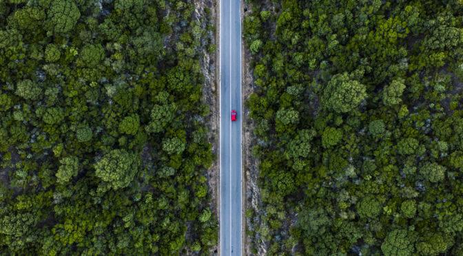 8 Eco-friendly cars   Women On Wheels