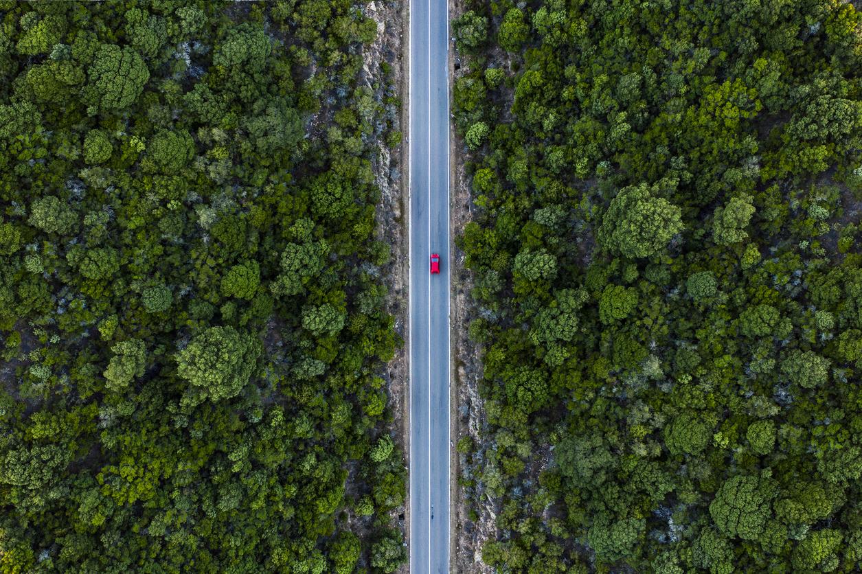 8 Eco-friendly cars | Women On Wheels
