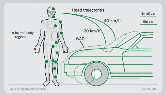 Pedestrian Safety - Vehicle Injury zones