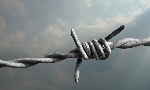 barbed-wire_istock